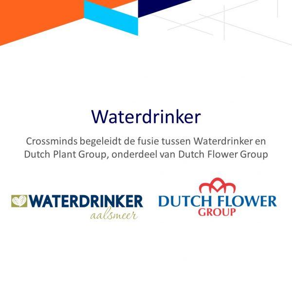Crossminds begeleidt de fusie tussen Waterdrinker enerzijds en OZ Planten en Hamiplant (onderdeel van Dutch Flower Group) anderzijds.